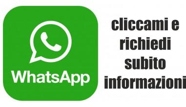 contatto whatasapp